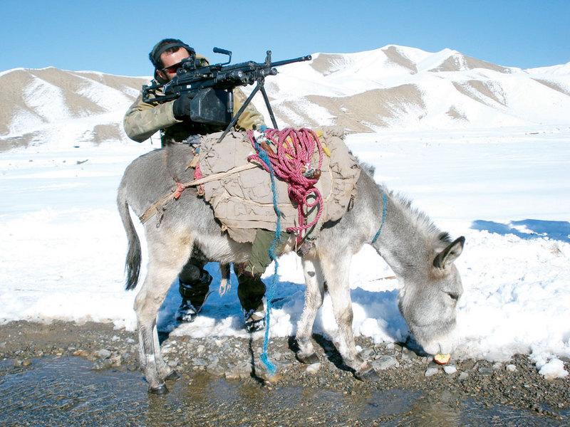 afghanistanalpinizl9